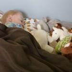 Eli's New Bed